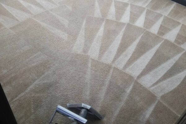 how-often-carpet-cleaning